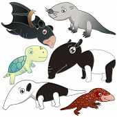 stock photo of tapir  - six lovely animals set on white background - JPG