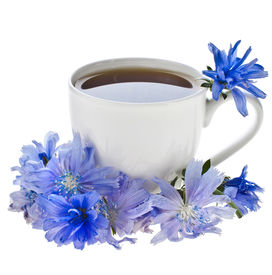 stock photo of substitutes  - Diet drink chicory in a cup  - JPG
