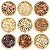 stock photo of sorghum  - gluten free grains   - JPG