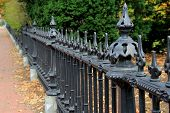 stock photo of wrought iron  - Strong detail and lines on black,wrought iron fencing that runs along the property line of home. ** Note: Visible grain at 100%, best at smaller sizes - JPG