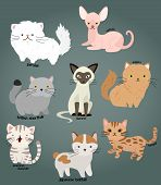stock photo of cat-tail  - a collection of some cat cartoon vector - JPG
