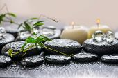 foto of tendril  - beautiful spa concept of green twig passionflower with tendril ice and candles on zen basalt stones with dew closeup - JPG