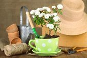 picture of plant pot  - Rustic table with flowers - JPG