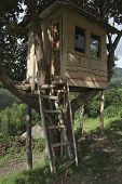 picture of mud-hut  - The traditional Ethiopian house on a tree - JPG