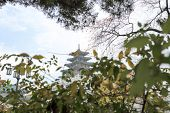 image of seoul south korea  - National Folk Museum of Korea in autumn Seoul South korea - JPG
