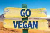 pic of vegan  - Go Vegan sign with desert background - JPG
