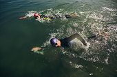 stock photo of competition  - Competitors fighting in the swim event of a triathlon competition - JPG