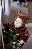 stock photo of bear-cub  - funny baby boy dressed as a bear cub  - JPG