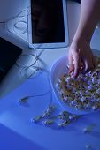 picture of addict  - Woman addicted to modern technology and popcorn - JPG