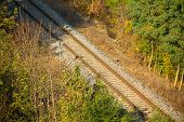 stock photo of train track  - Photo shows train track in the middle of wood under sun - JPG