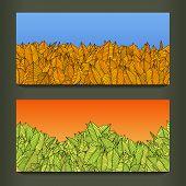 Постер, плакат: colorful leaves