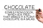 Hand with marker writing: Funny Quote About Chocolate poster