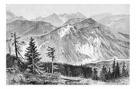 pic of g-spot  - Bialki Valley as viewed from the Tatra Mountains in Tatra - JPG
