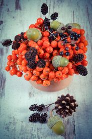 image of cone  - Vintage photo Autumn fruits of forest on old rustic wooden background bunch of red rowan alder cone green acorns brown pine cones elderberry - JPG