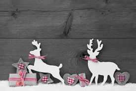 picture of ribbon decoration  - Christmas Decoration With Reindeer Couple In Love On White Snow - JPG
