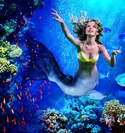picture of undine  - Girl mermaid dive underwater through coral fishes - JPG