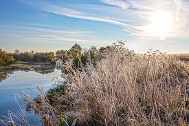 picture of novosibirsk  - The first frost - JPG