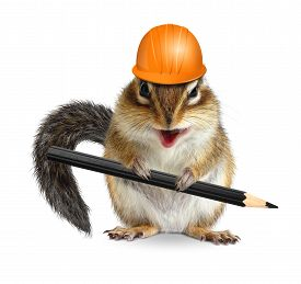 stock photo of chipmunks  - Funny architect chipmunk with pencil and Hard Hat - JPG