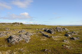 pic of murmansk  - Rocky tundra of the Rybachy peninsula near Murmansk Russia - JPG