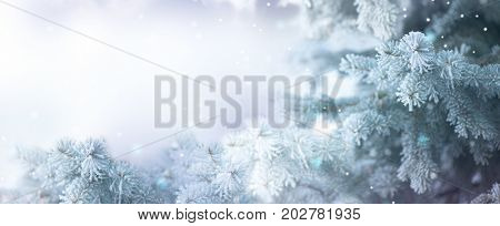 poster of Winter Tree Holiday Snow Background. Snowflakes. Blue spruce, Beautiful Christmas and New Year Xmas