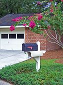 stock photo of crepe myrtle  - mailbox and pole in beautiful retirement community