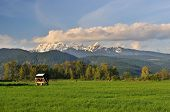 Farmland And Golden Ears Mountain, Pitt Meadows