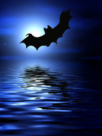 pic of drakula  - Bats flying over the water - JPG