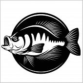 Fishing Logo. Bass Fish Club Emblem. Fishing Theme Vector Illustration. Isolated On White. poster