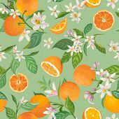 Seamless Orange Pattern With Tropic Fruits, Leaves, Flowers Background. Hand Drawn Vector Illustrati poster