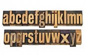 full English alphabet, lowercase, in two isolated rows - vintage wood letterpress printing blocks