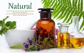 Natural Medicine Bach - Herbs  Therapy. Fresh Herbal Extract. Alternative Therapy, Treatment. poster