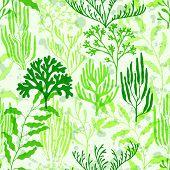 Coral Polyps Seamless Pattern. Kelp Laminaria Seaweed Algae Background. Exotic Marine Life Pattern.  poster