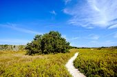 Everglades Coastal Prairies