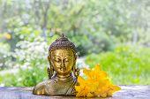 Buddha And Lilies. Buddha Head. Buddha Background. poster