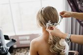 Elegant Bride Hairstyle. Bridal Accessory, Bridal Hairstyle. Look From Back poster