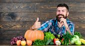 Best Organic Food. Bearded Mature Farmer. Harvest Festival. Organic And Natural Food. Happy Hallowee poster
