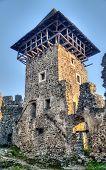 pic of zakarpattia  - Nevitsky Castle ruins Kamyanitsa village 12 km north of Uzhgorod Zakarpattia Oblast Ukraine Built in 13th century - JPG