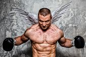 Young boxer with angel wings behind his back posing
