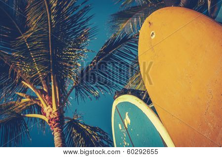Vintage Surfboards And Palms poster
