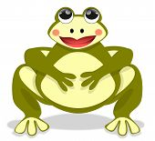 stock photo of fat lip  - Illustration of a beautiful fat frog sitting front view - JPG