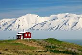 image of iceland farm  - Iceland summer landscape in Fjord house mountains - JPG