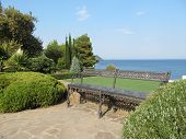 pic of paysage  - Magnificent evergreen park Avazovskogo on the southern coast of Crimea - JPG