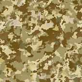 pic of camouflage  - Camouflage military background - JPG