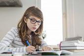 foto of homework  - Teenage girl doing homework at table - JPG