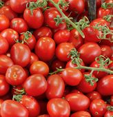 stock photo of plum tomato  - Pile of fresh organic plum tomatoes on wine - JPG