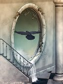 picture of raven  - Fantasy Landscape with big window a raven - JPG