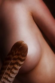 stock photo of sadism  - brown feather is tickling a naked bosom - JPG