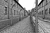 pic of deportation  - Auschwitz - JPG