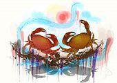 pic of crab  - dancing crabs - JPG
