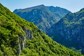 pic of afforestation  - Beautiful view of a high afforested mountains - JPG